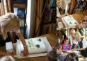 Naj lesná kniha 2013